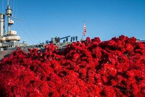 """""""Авроре"""" такое даже не снилось:  благодарные потомки в день 100-летия Великого Октября чуть """"не утопили"""" её в красных гвоздиках"""