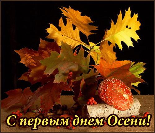 Открытки. С первым днем осени! Дары леса открытки фото рисунки картинки поздравления