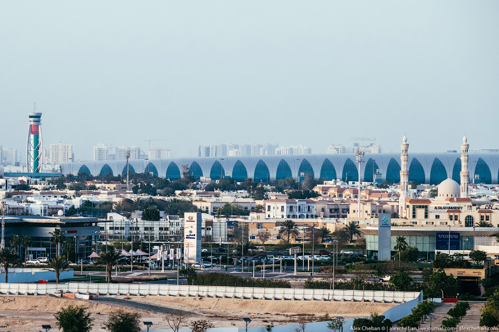 7. Или бассейн в отеле на Sheikh Zayed Road.