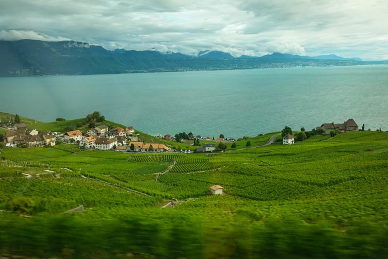 Даже если ваш поезд идёт не по самой кромке воды, всё равно красиво. Вас порадует вид зелёных полей