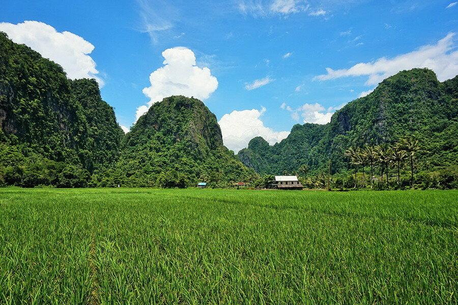 Карстовые области южного Сулавеси