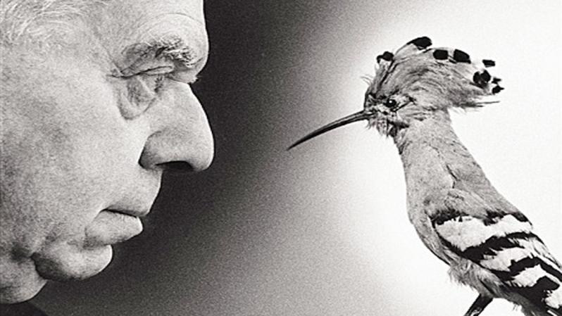 Le-Cinque-terre-diventano-anche-Parco-letterario-protagonista-Eugenio-Montale.jpg