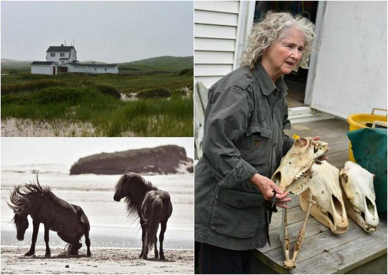 Женщина 40 лет живёт в одиночестве на удаленном острове, покрытом туманами 127 дней в году
