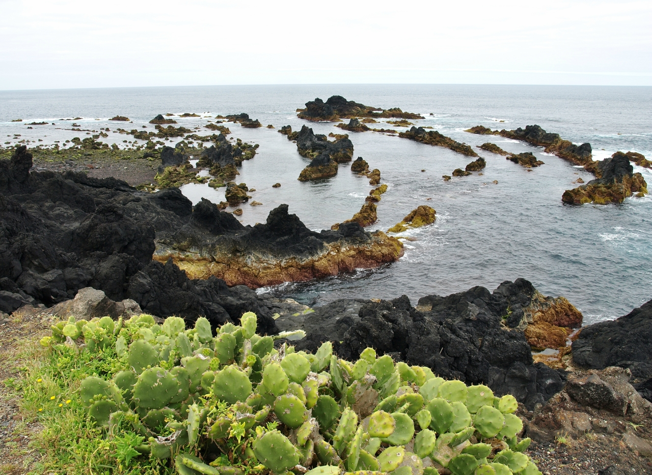 Картинки по запросу Феррария горячий океан