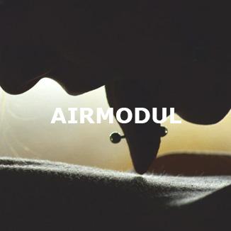 AIRMODUL