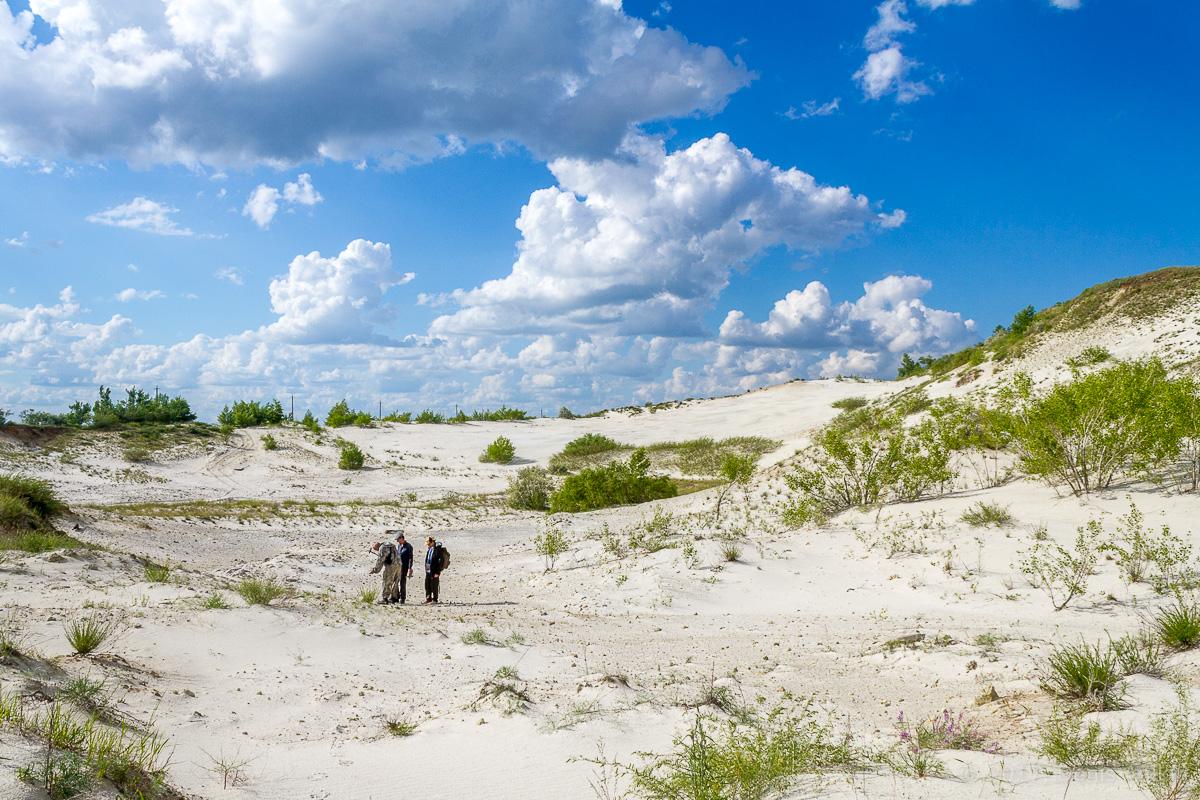 камышинский песчаный карьер фото 4