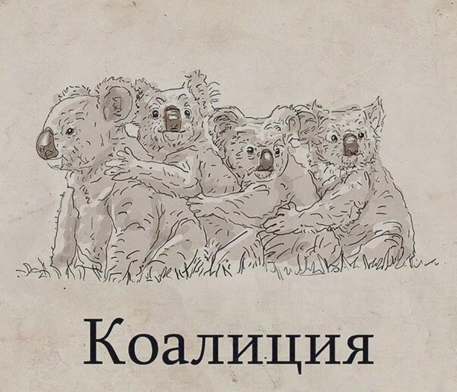 Подборка интересных и веселых картинок 31.07.17