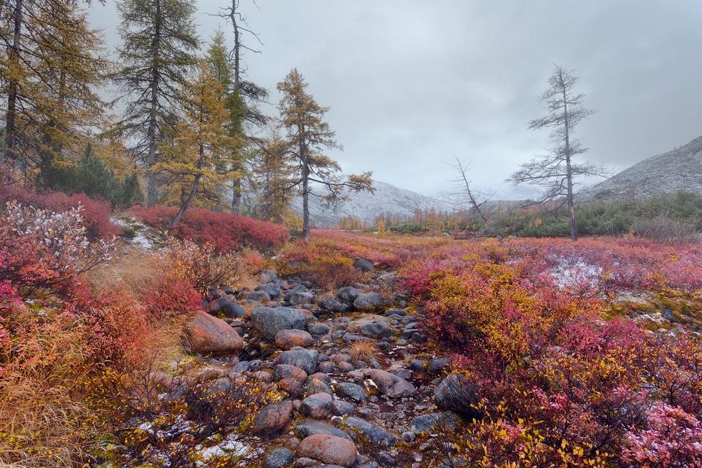Осенняя Колыма на снимках Тони Андреевой