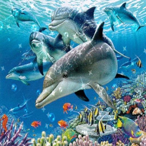 Открытки. Всемирный день моря. Дельфины под водой