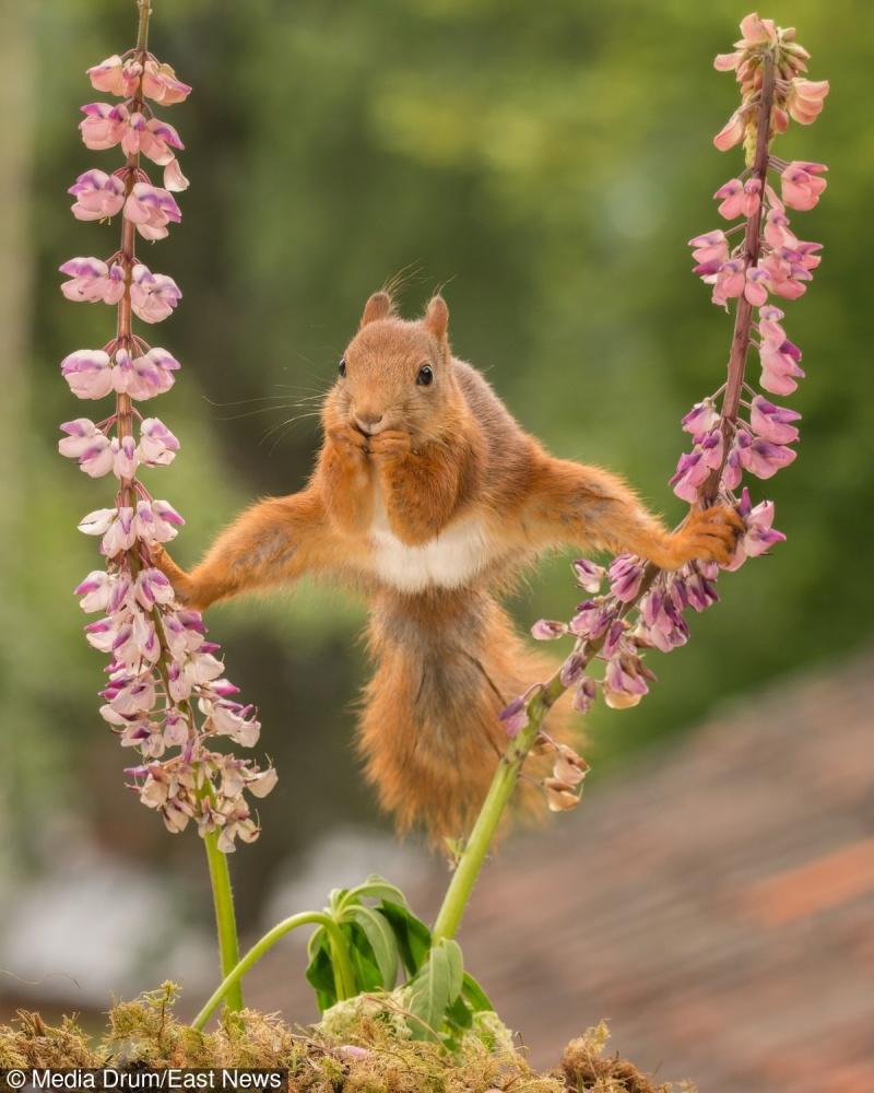 © East News   «Ячеловек, который вовсем стремится видеть волшебство...»