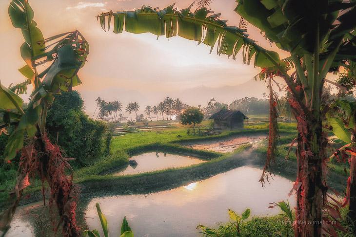 Индонезия. Рай на земле (26 фото)