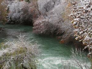 Первый снег в Ташкенте