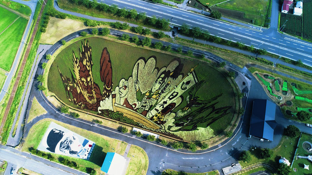 Dozens of Rice Varieties Form Colorful Drawings in the Fields of Inakadate, Japan (4 pics)