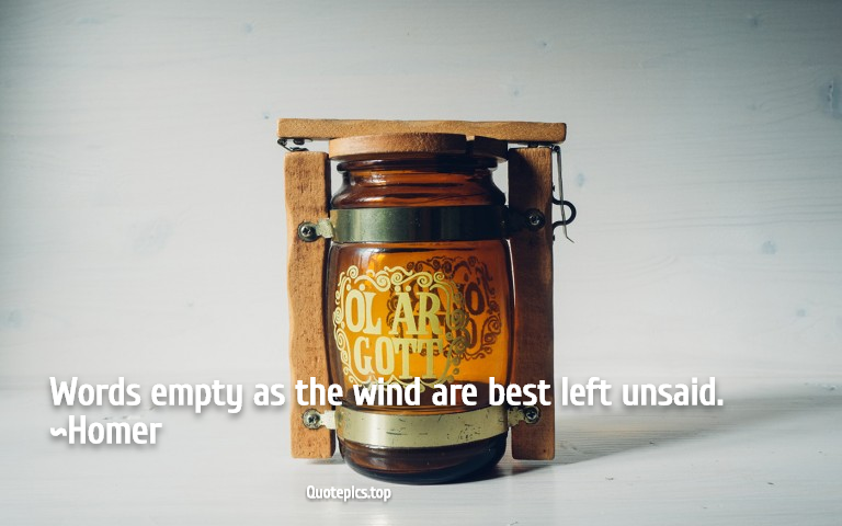 Words empty as the wind are best left unsaid. ~Homer