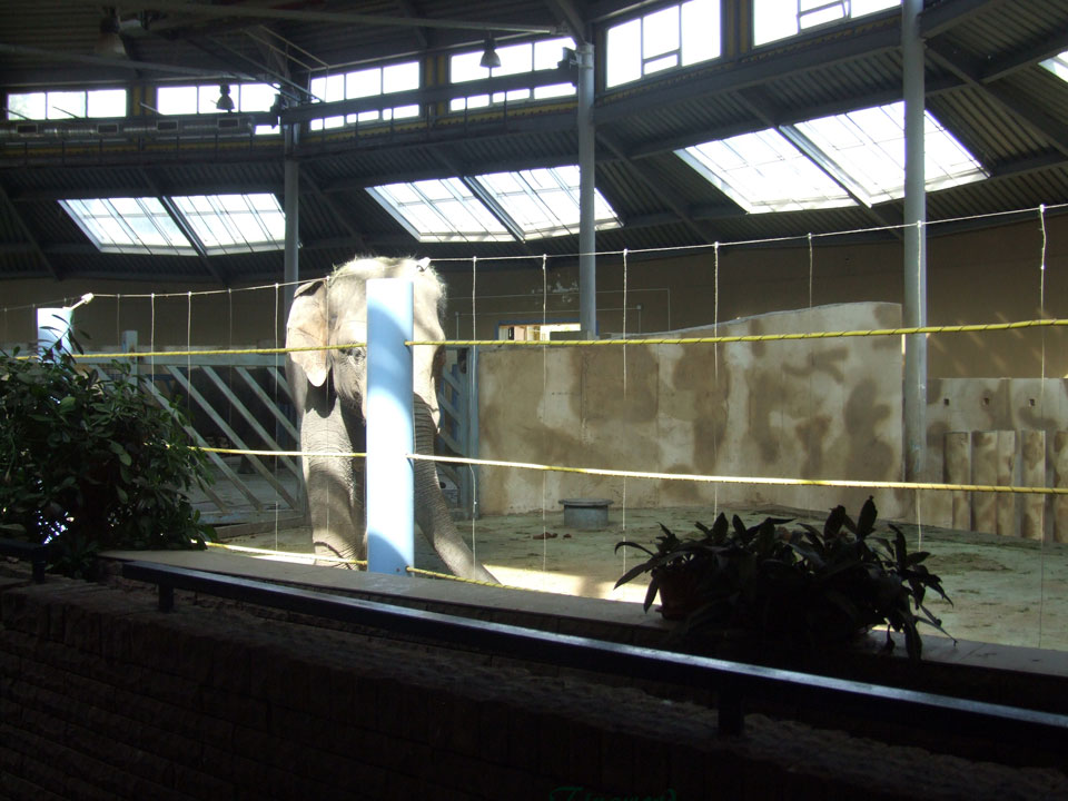 зоопарк-46.jpg