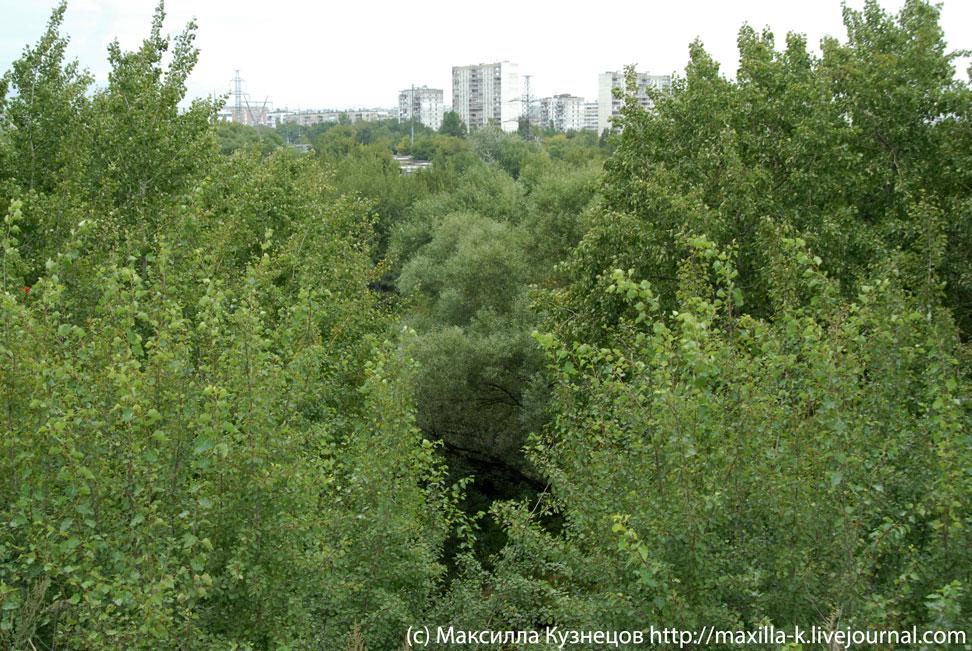 Река Городня сверху