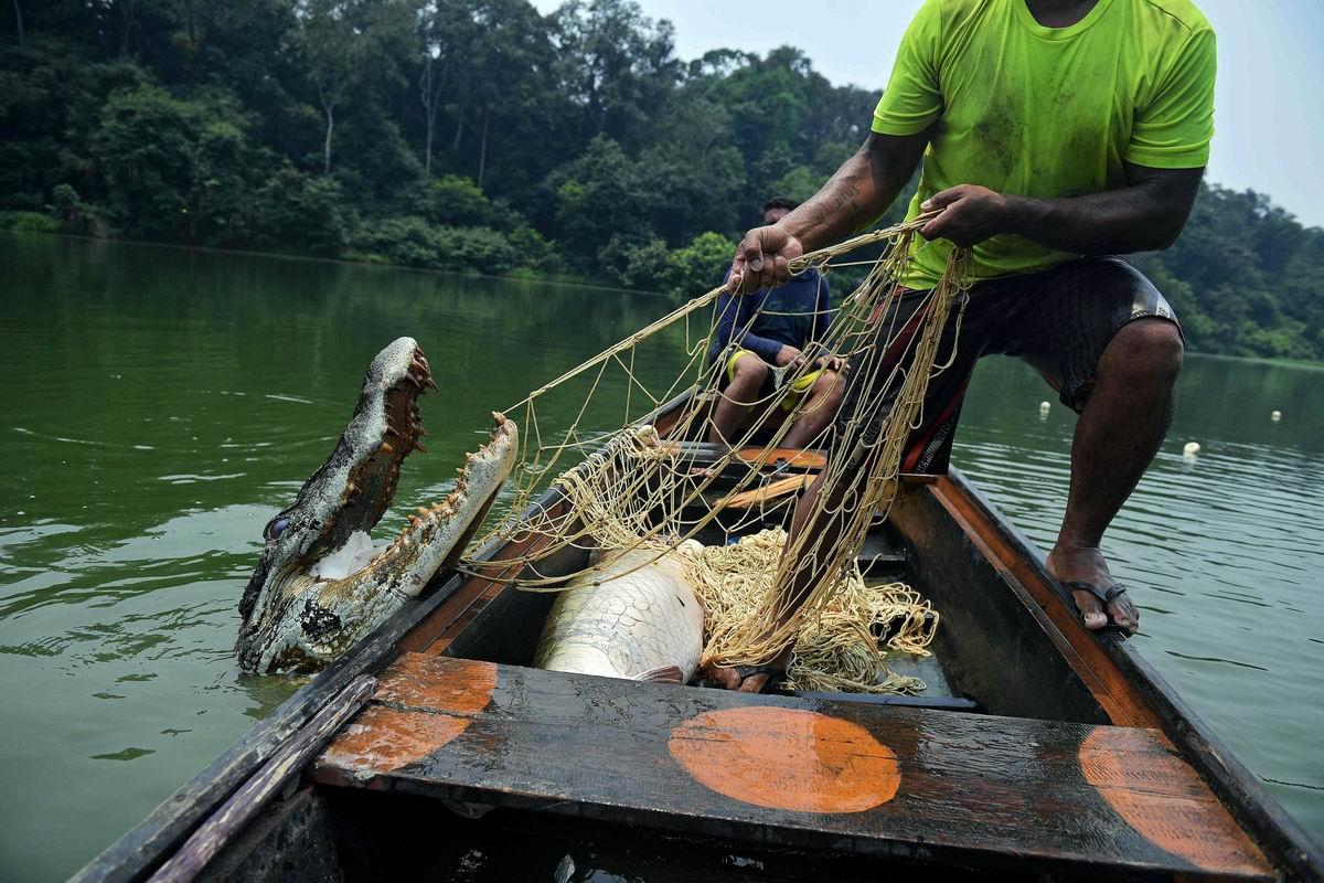 Тянем-потянем!: Рыбаки ловили рыбу ...