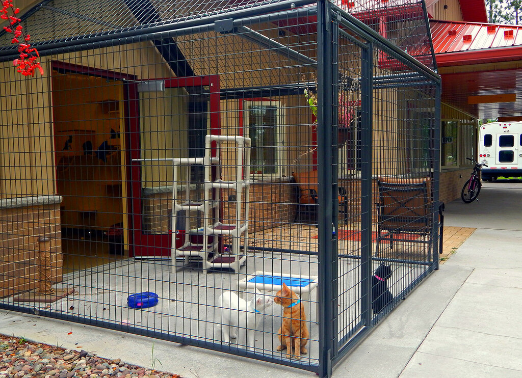 The Lincoln County Humane Society