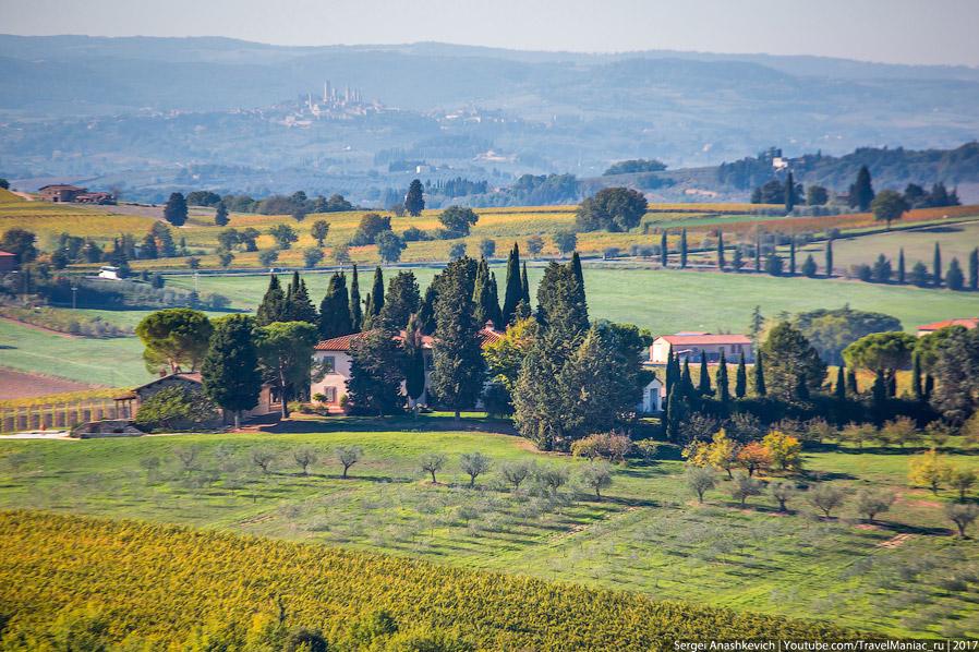 7. Вспаханные поля, кстати, тоже попадаются. Но среди сочной зелени, желтых виноградников и лесов он