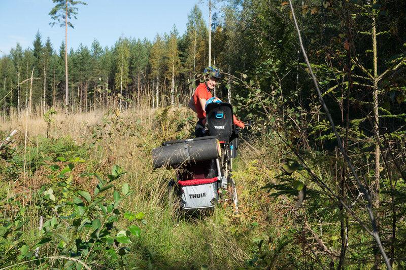 с велосипедами по старой вырубке в Финляндии