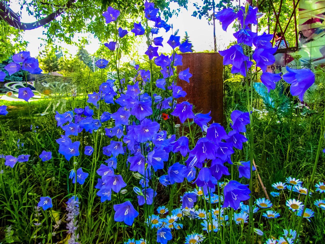 irina-fortuna-moscow-flowers 01.jpg
