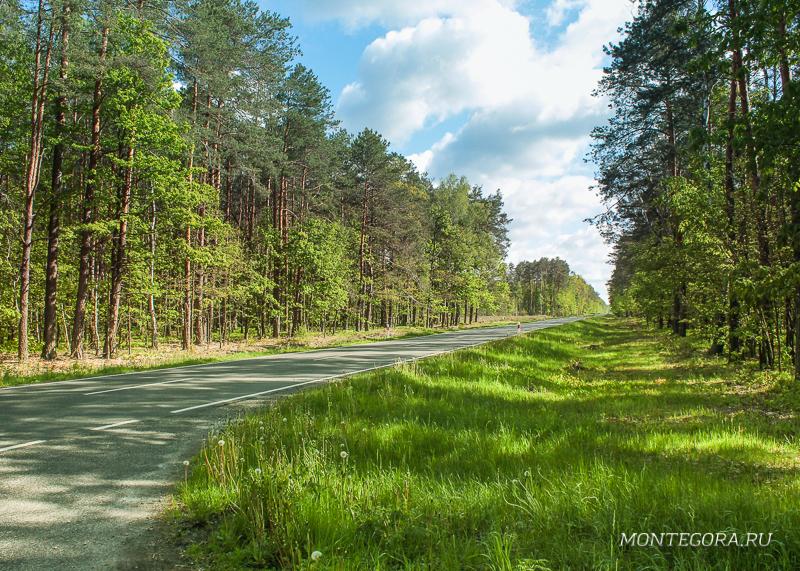 Дорога из Белоруссии в Польшу
