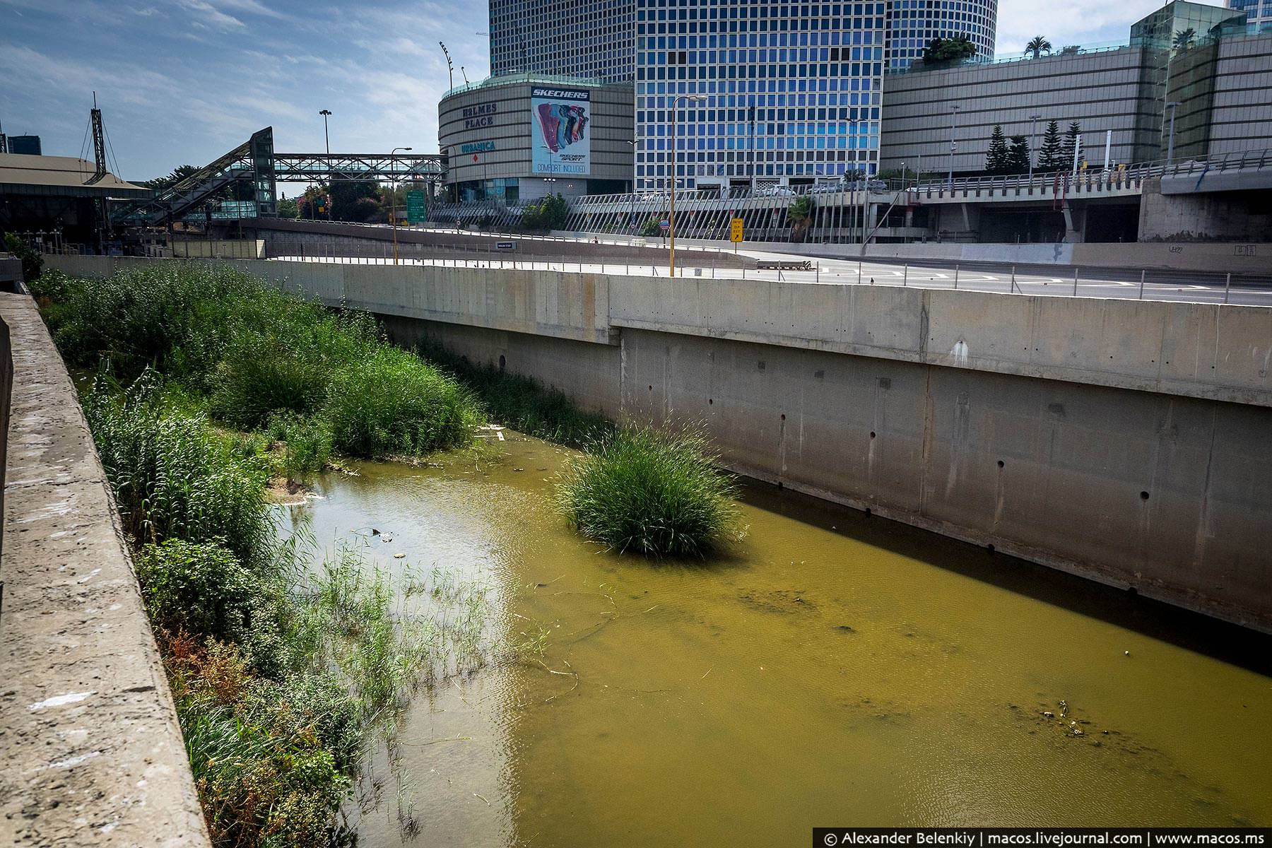 Израильские реки вообще славятся своей полноводностью.
