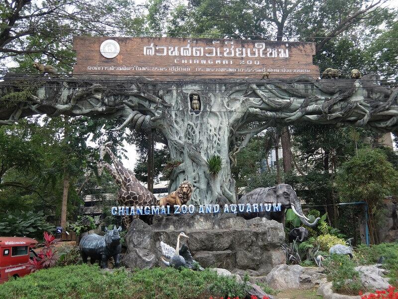 Чиангмай - Зоопарк