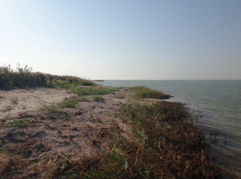 На севере Ясенской косы, у пролива... 32. Фото из велокольца. Ахтари-Староминская-Бейсугский пролив (197).JPG