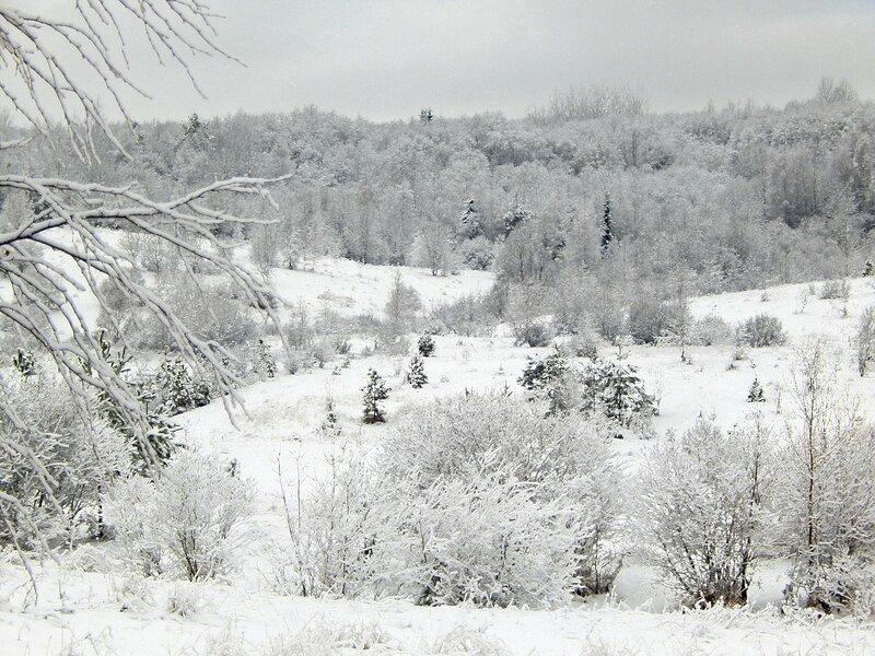 Валдай в снегах