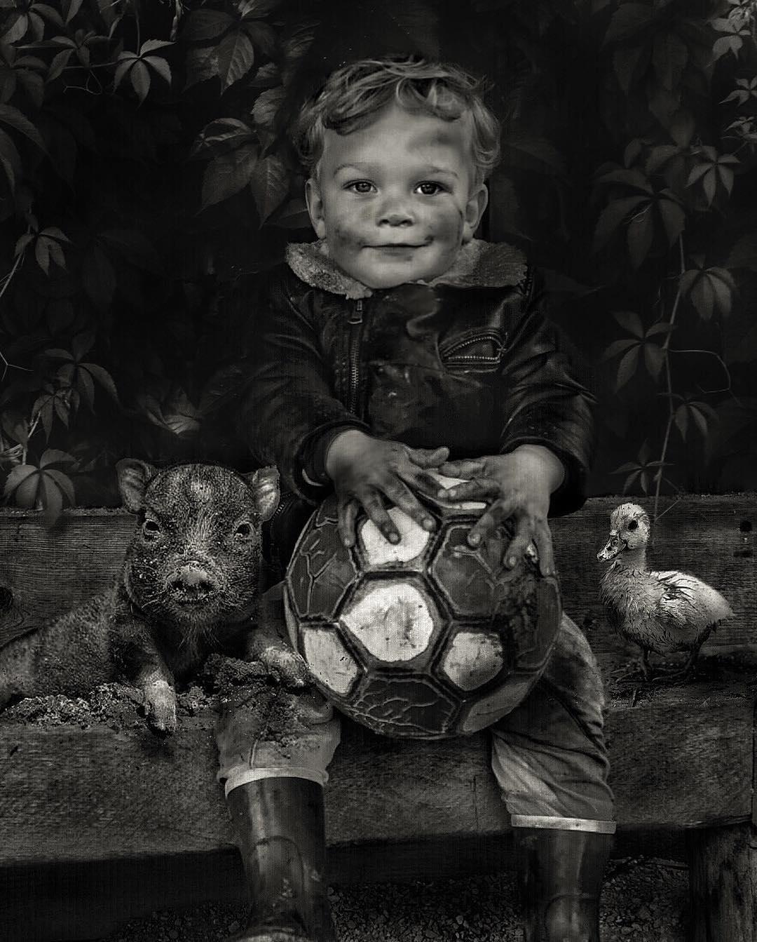 Сказочные работы Марселя ван Льюита