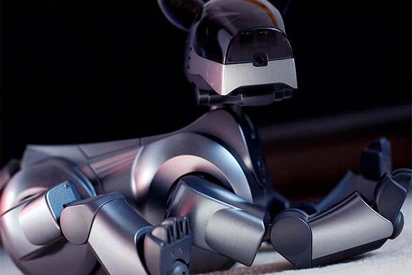 Sony возрождает собаку-робота