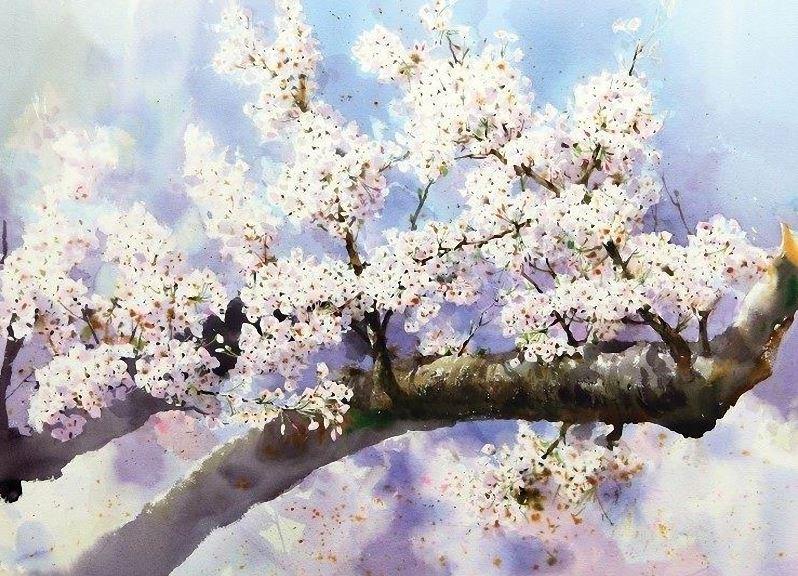 Корейский-акварелист-Shin-Jong-Sik.-Цветы-акварелью.-Пятые.jpg