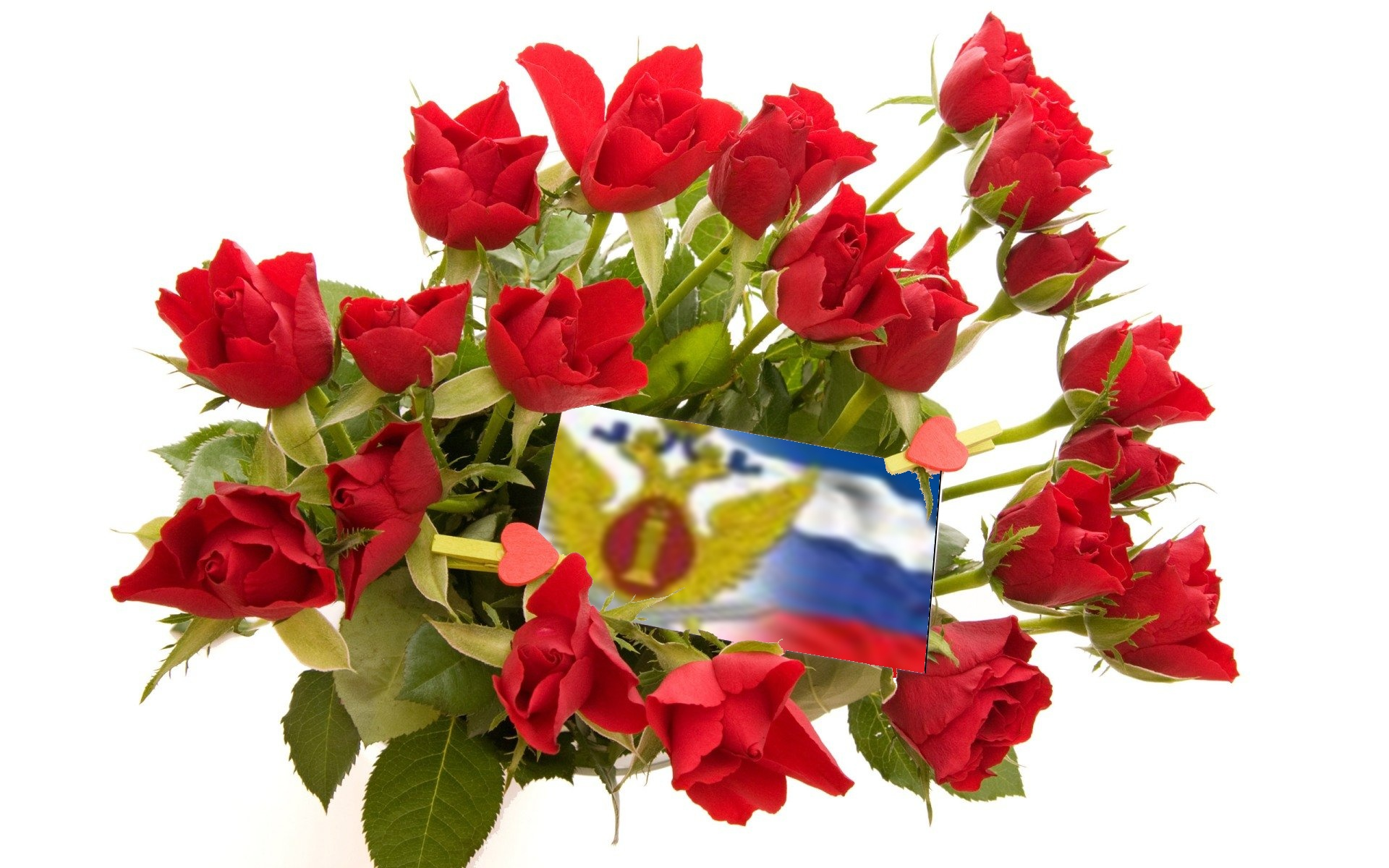 День работников СИЗО и тюрем. Цветы