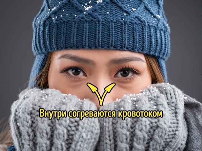 © depositphotos     Наши глаза лишены рецепторов, которые чувствительны кизменениям темп