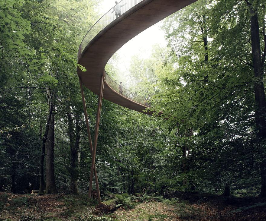 Прогулочная тропа длиной 600 метров ведет к башне по земле, над землей и между деревьями.