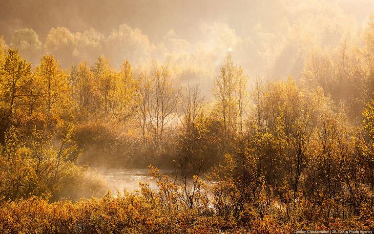 Золотая осень на Кольском полуострове (44 фото)
