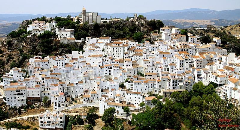 Испания переживает сейчас жестокий экономический кризис. В одной только Андалусии находится 690