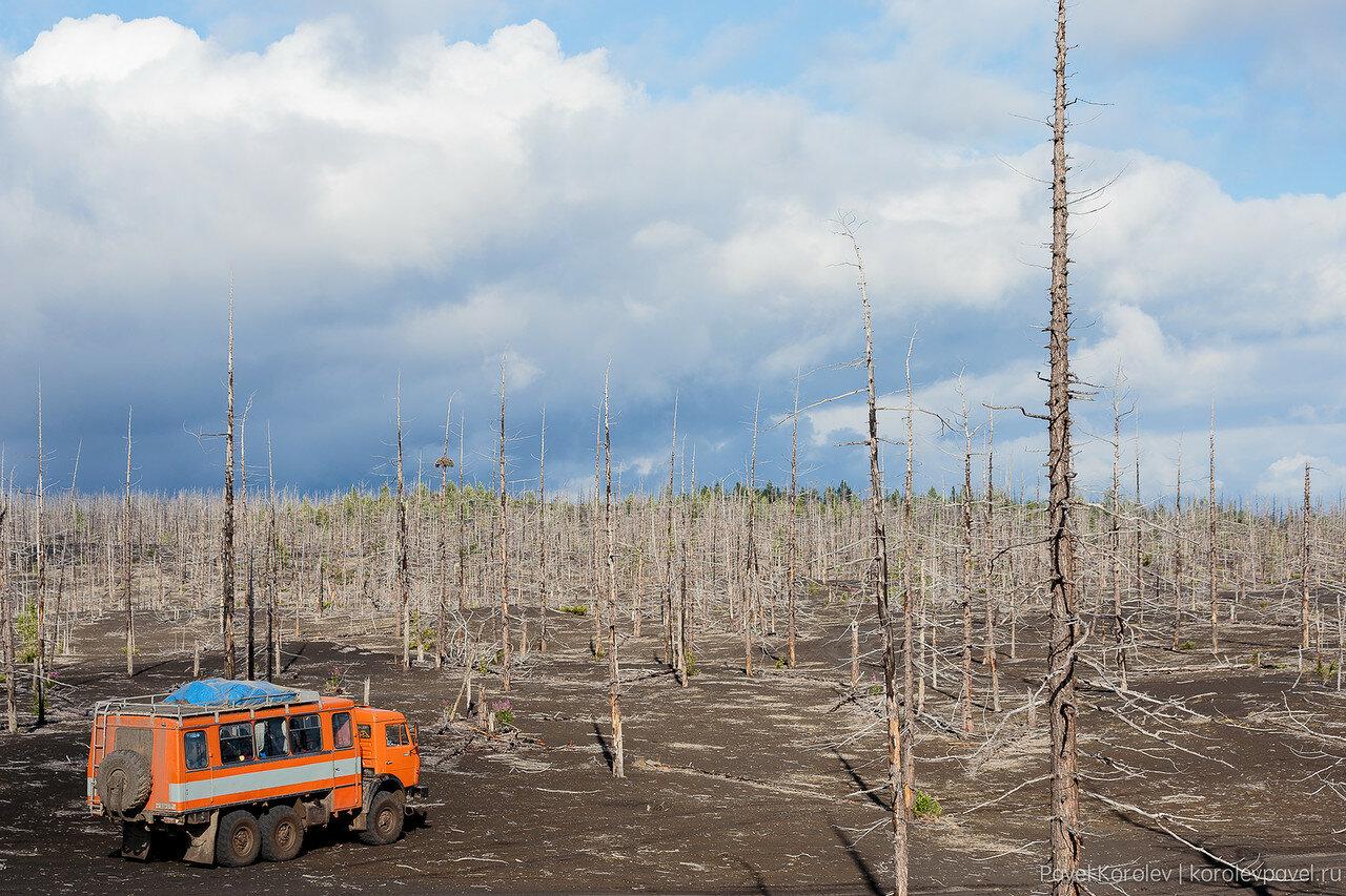 Kamchatka-161.jpg