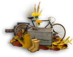 Autumn Gold #10 (130).png