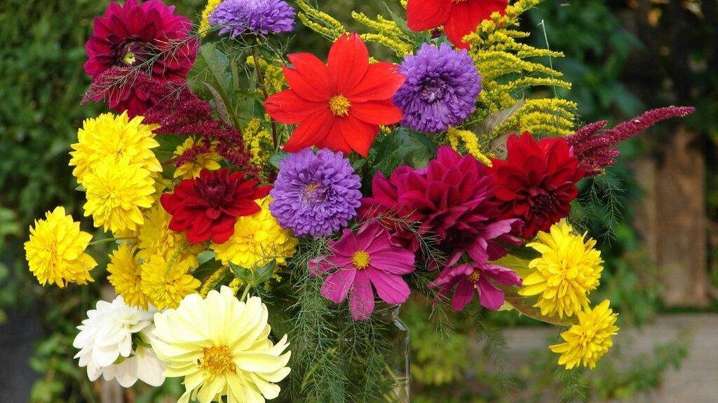 flowers-in-the-vase-flower-hd-wallpaper-1920x1080-39406.jpg