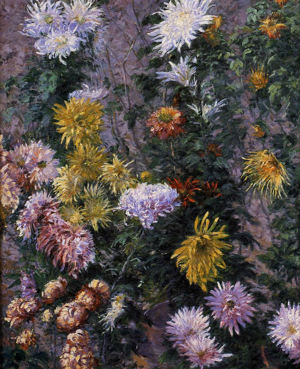 Гюстав Кайботт. Белые и желтые зризантемы в саду.