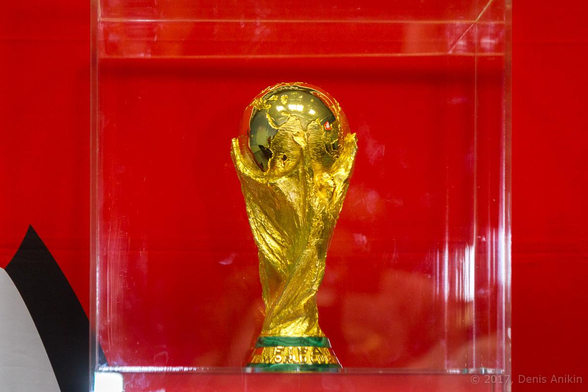 Кубок чемпионата мира в Саратове фото 7