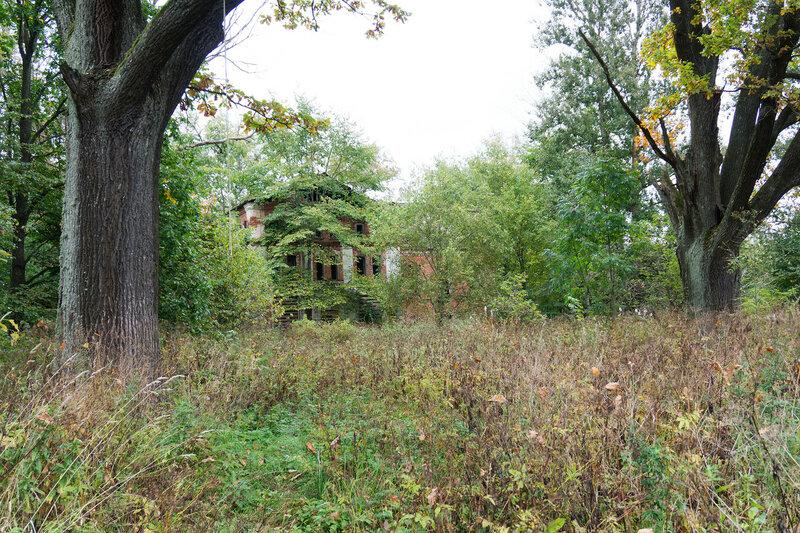 усадьба Лютка и старые дубы