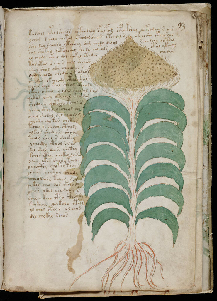 manuscrito165.jpg