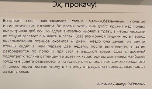 https://img-fotki.yandex.ru/get/369167/140132613.6ca/0_24430a_673154ae_L.jpg