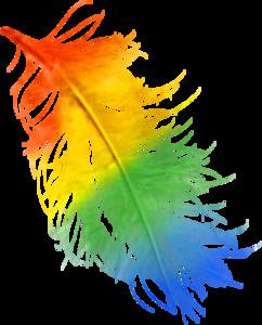 перья разноцветные