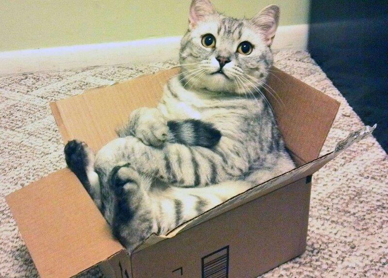 0 17f01b 4c5801be XL - Домик для котика