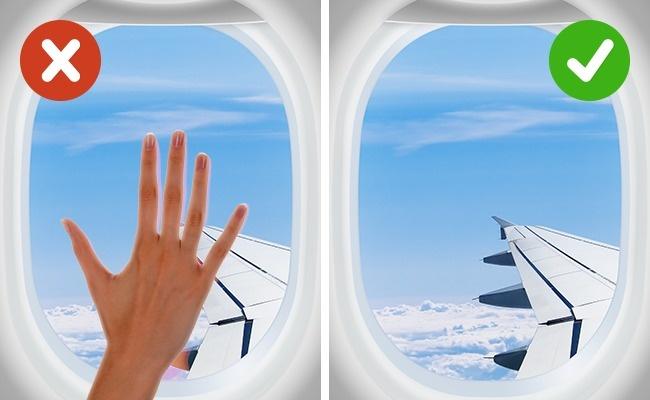 © depositphotos  © depositphotos  Самолет— это настоящий рассадник бактерий . Например,