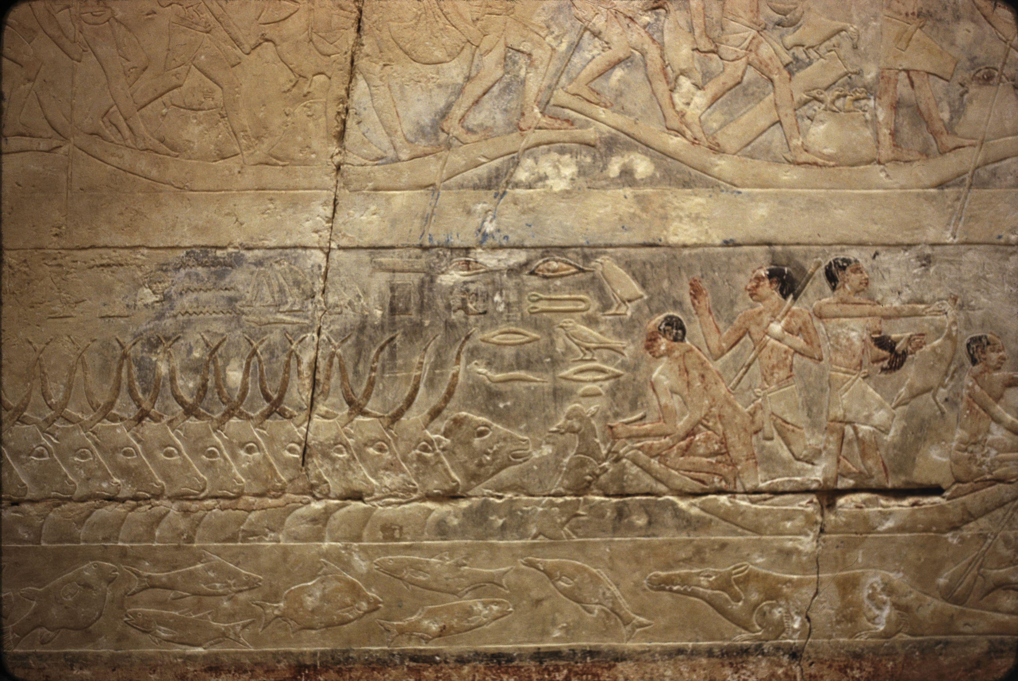 14. Саккара. Мастаба принцессы V династии Идоут